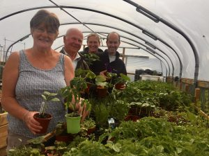 Ann Kirk, Jim Kirk, Tracy Rich and Troy Norin preparing for the plant sale in the Braehead Polytunnel